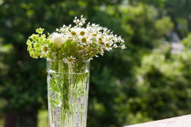 透明なグラスにいけられた白い花々